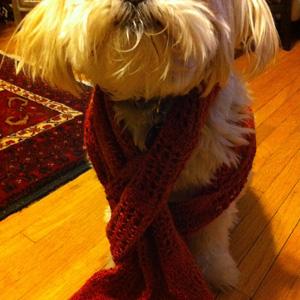 scarf 9.1