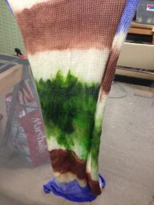 sock blank 1